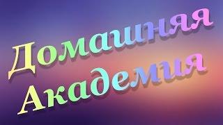 Домашняя Академия с Еленой Жуковой часть 17.