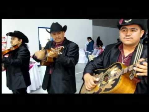 EL CHAT -   Trio