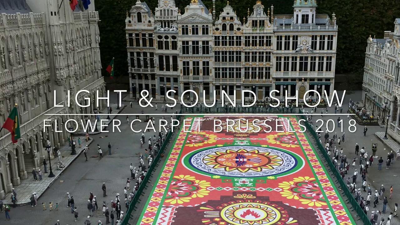 flower carpet light sound show brussels belgium