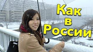 ЯПОНИЮ ЗАНЕСЛО. Японцы оказались не готовы к сильному снегопаду в Токио