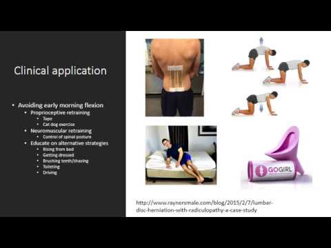 Managing low back pain Part 1: A Masterclass for therapists
