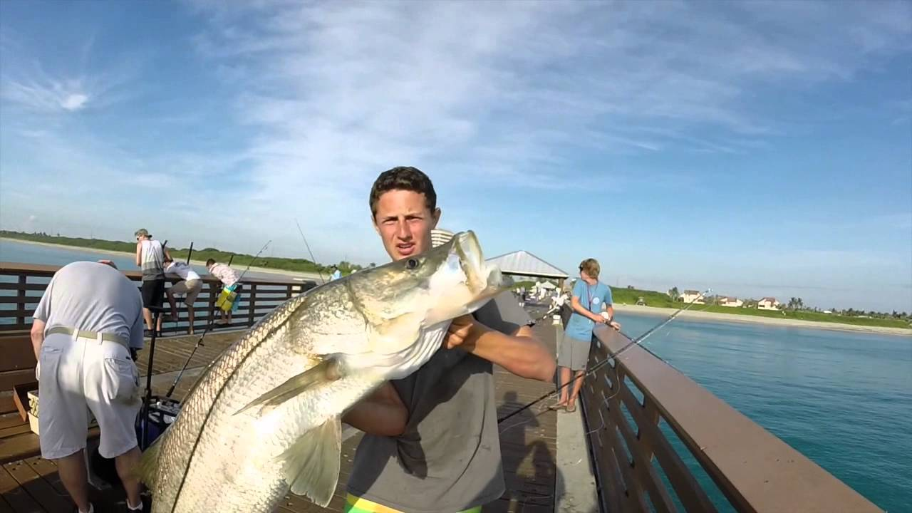 juno beach pier snook fishing the final chapter youtube