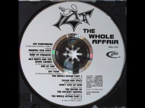 ►IZIT · The Whole Affair · EVERYWHERE · 1993◄