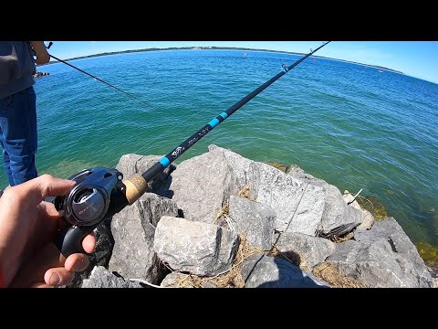 Bank Fishing Michigan Multi Species