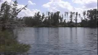 Clermont Florida - Chain of Lakes Building Lot in Susan