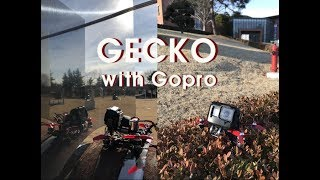 GECKO x ROOSTER / Armattan / Russell FPV FreeStyLe