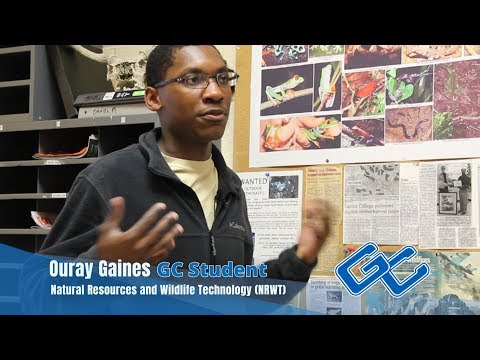 Ouray Gaines - Your Journey Begins at Garrett College