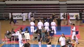 wku world championships heraklion crete 2013 finals karate traditional veterans 45 male