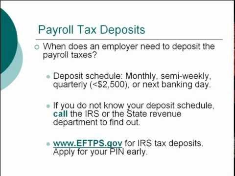 Payroll Basics