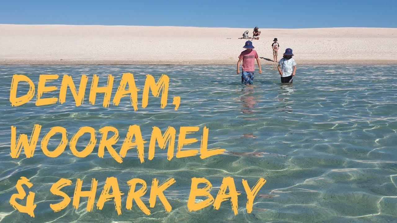 Download Shark Bay, Denham & Francois Peron: S03 Western Australia E10 Road Trip Lap of Australia