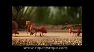 Akıllı karıncalar