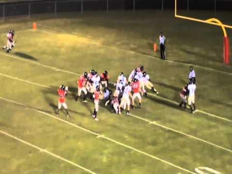 Tyler Seabolt Rockdale County High School Bulldogs 2011 Season