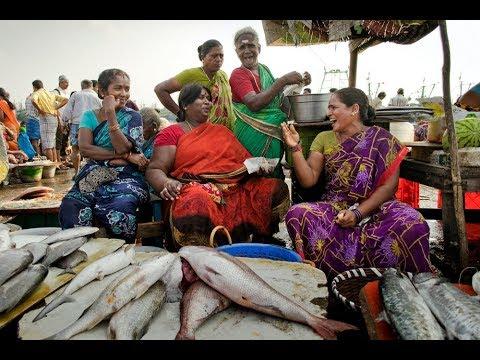 Machhimarcket In Mumbai,fish Market Varsova, Mumbai, India
