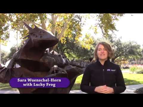 Monsanto Olin Case Competition Submission - TCU Neeley School of Business