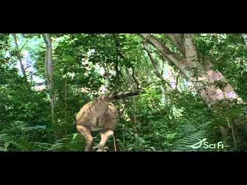 Youtube Tyrannosaurus Azteca tyrannosaurus azteca -...