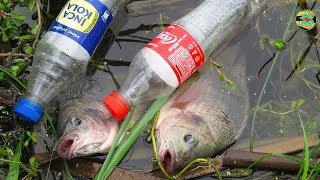 INCREÍBLES CAPTURAS PECES TILAPIAS CON BOTELLA PLÁSTICO ! Pesca con Lombriz de Tierra