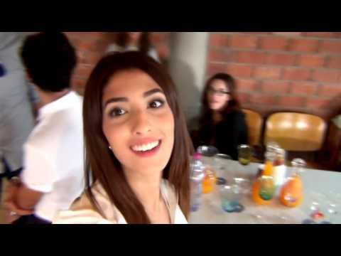 Vlog# 1 : Ma soutenance de fin d'études.