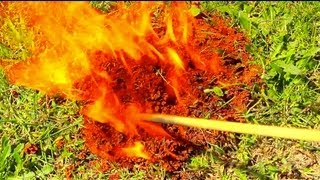 BIT AND STUNG BY FIRE ANTS? KILL AND BURN THEM WITH GAS AND FIRE!
