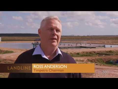 Murray Cod Aquaculture -  ABC Landline