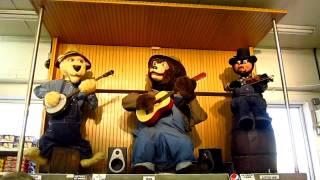 Bluegrass Singing Bears