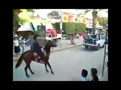 fuck a horse