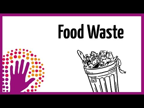 Food Waste - What You Should Know