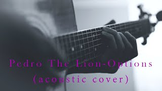 Pedro The Lion - Options (acoustic cover)