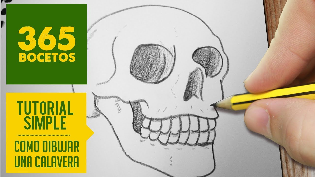 Como dibujar una calavera how to draw a skull youtube - Como aislar una pared del ruido ...