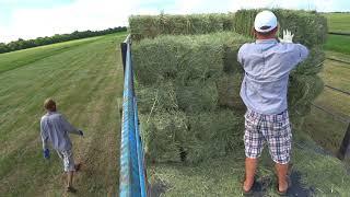 Сбор тюков лугового сена и люцерны;)