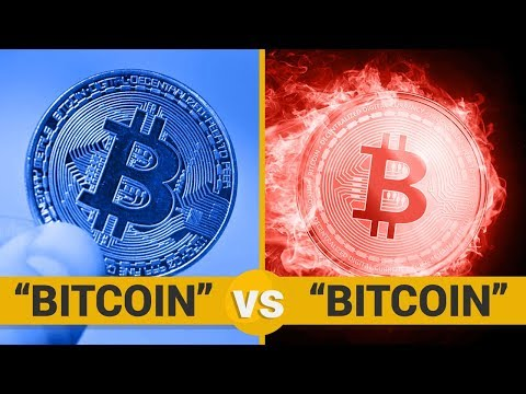 BITCOIN VS BITCOIN - Google Trends Show