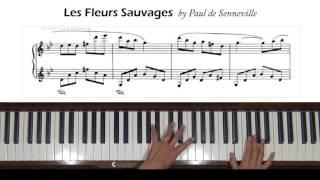 Video Les Fleurs Sauvages by Paul de Senneville Piano Tutorial download MP3, 3GP, MP4, WEBM, AVI, FLV November 2017
