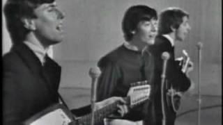 The Hollies - (Rare) Live