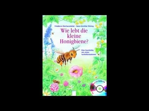 """""""Wo lebt die kleine Honigbiene?"""" von Hans-Günther Döring und Friederun Reichenstetter"""