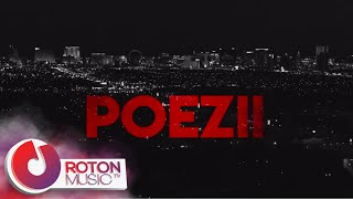 Dj Dark X Mentol X Delia Rus - Poezii Lyric Video