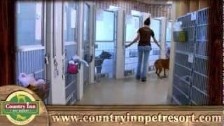 Corporate Video - Pet Resort - Country Inn Pet Resort - Omg National - Florida