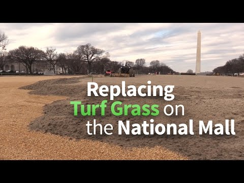 Turf Revitalization on the National Mall