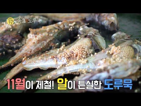 2016감자TV 속초도루묵 2편