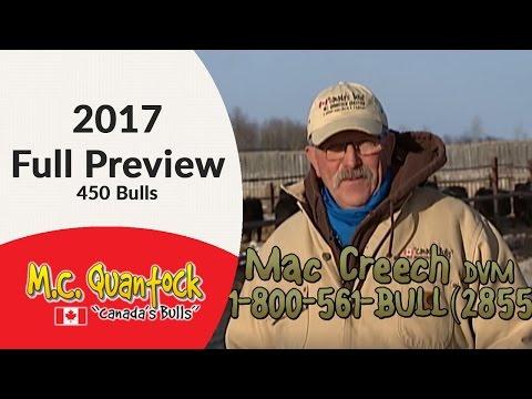 "2017 M.C. Quantock ""Canada's Bulls"" Bull Sale Full Preview - 450 Reputation Purebreds & Hybrids"