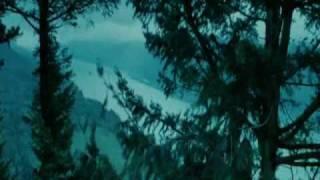 BiZzy™ - Twilight (сумерки)