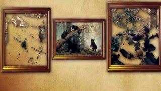 видео Лебедин (Сумская область)