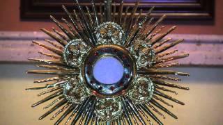 Santo Rosario por la Paz del Mundo