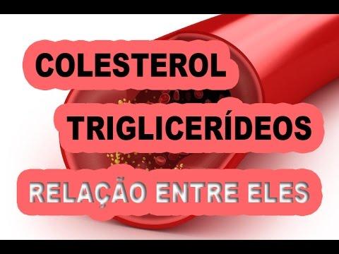 Relação entre colesterol e triglicerídeos