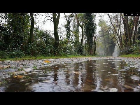 1 Saat Ninni - Dandini Dandini Dastana ve Fış Fış Kayıkçı (Tekrarlı Bebek Uyutan Müzikler)