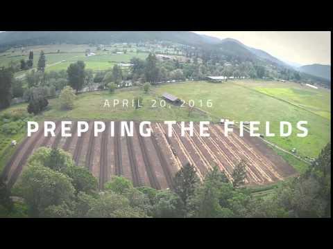 OM Farms Oregon - Prepping the Fields 42016 (Social Media 15)