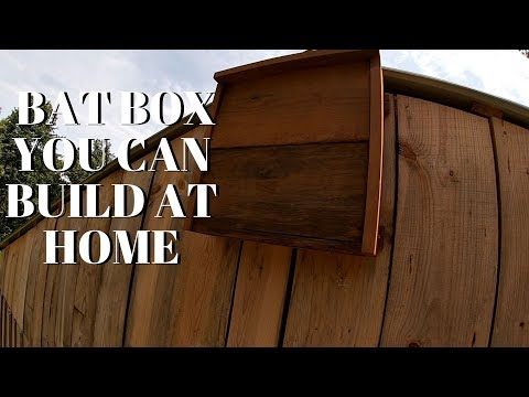 HOW TO BUILD A BAT BOX. THE BEST ORGANIC PEST CONTROL FOR A GARDEN!!