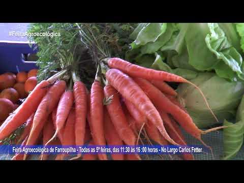 Conheça a Feira Agroecológica de Farroupilha 29082018