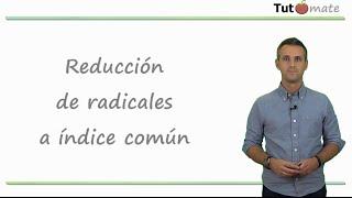 Reducción de radicales a índice común