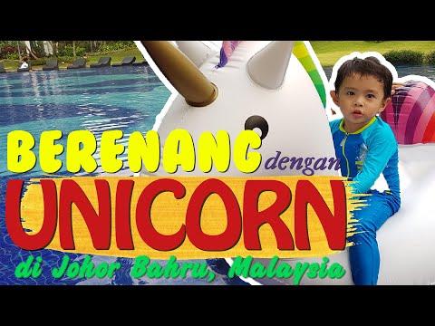 berenang-dengan-unicorn-di-johor-bahru,-malaysia