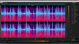 Trotcon Audio Editing Example