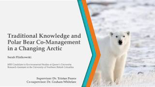 Traditional Knowledge and Polar Bear Co-Management in a Changing Arctic